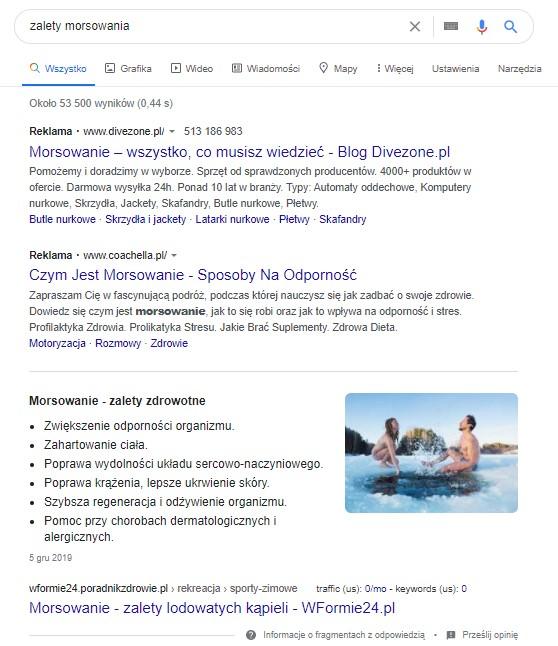 Lista wyświetlająca się pod reklamami w wynikach wyszukiwania